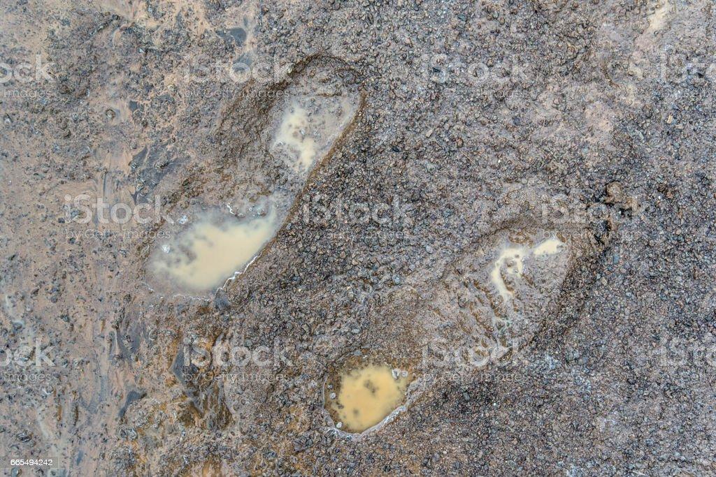 Footprints in the slush stock photo