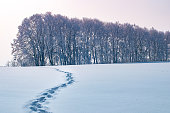footprints in the snow of a man left in the distance. Concept or landscape of a cold winter morning