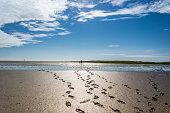 Footprints in the Wadden Sea