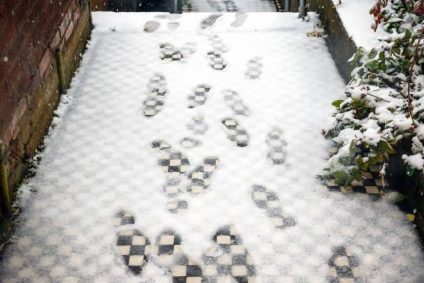 fußspuren im schnee vor haustür - schuhe auf englisch stock-fotos und bilder