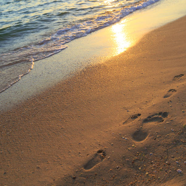 Footprints of an adult man and child on the sand on the beach at sunset stock photo
