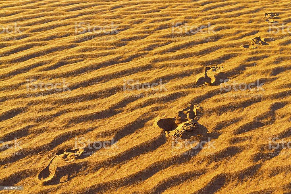 Footprints on sand stock photo