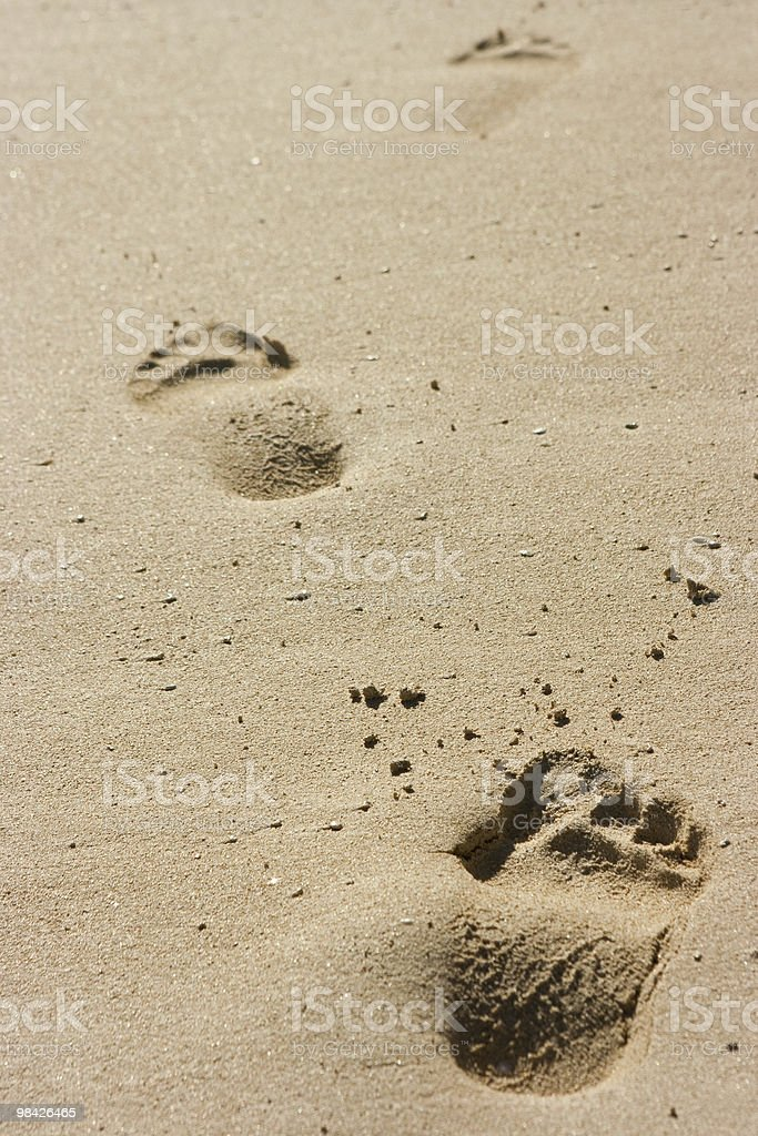 Footprints on sand royalty-free stock photo