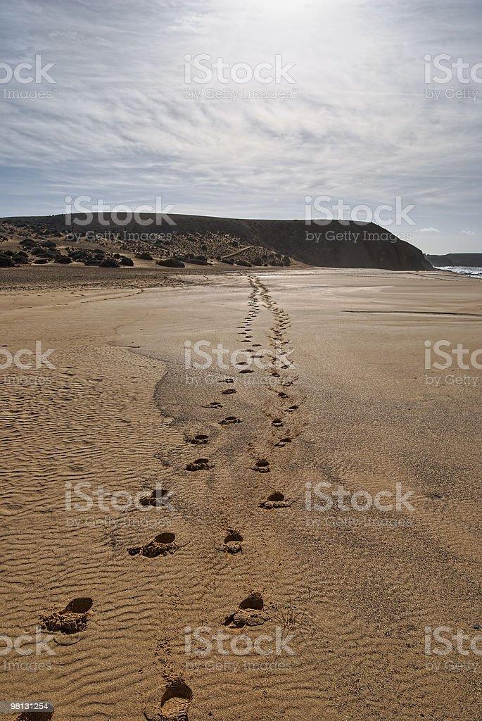Footprints on sandy beach royalty-free stock photo