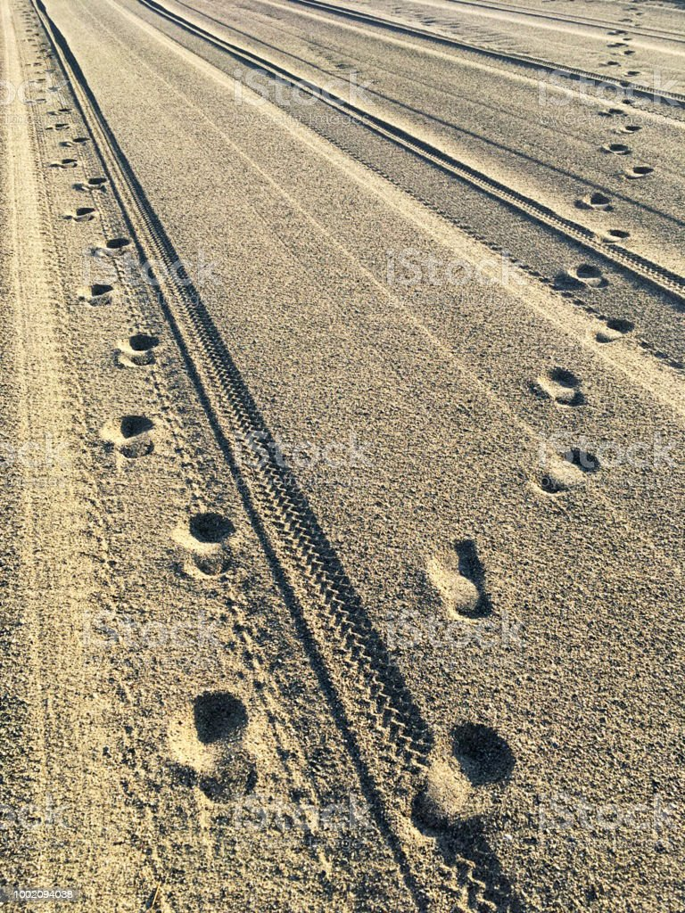 Footprints and Tyre tracks on a Beach