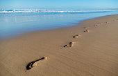 Footprints on a remote beach at dawn