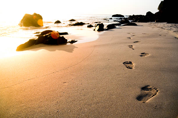 footprints am strand - fußspuren stock-fotos und bilder