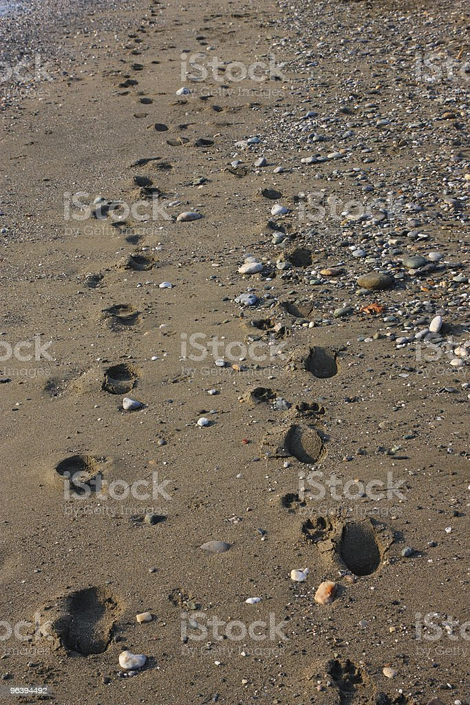 Footprints on the Beach - Royalty-free Beach Stock Photo