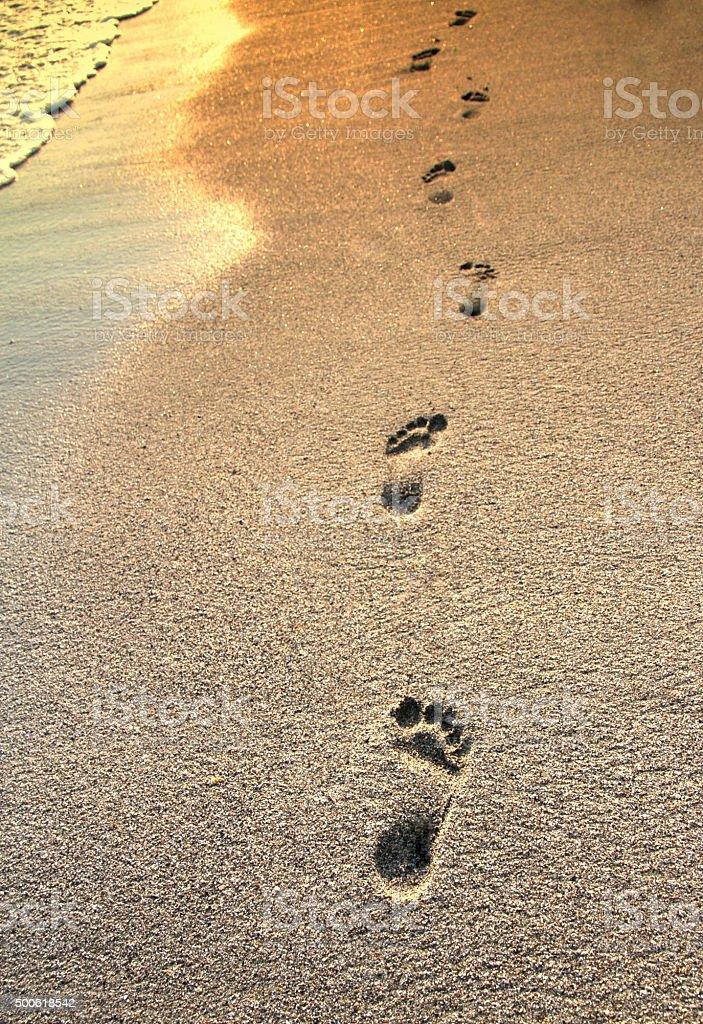 Footprints on the beach sand, variation concept