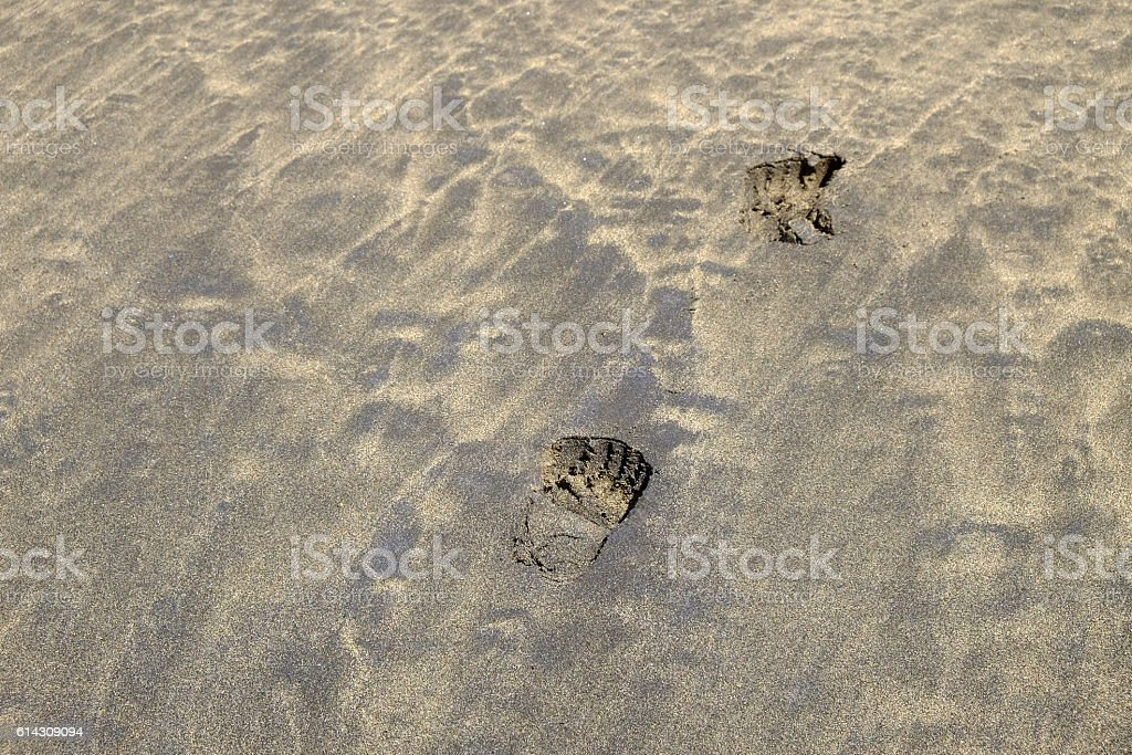 Footprints on the mixed golden and black sand. stock photo