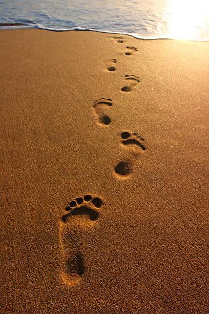 footprints - fußspuren stock-fotos und bilder