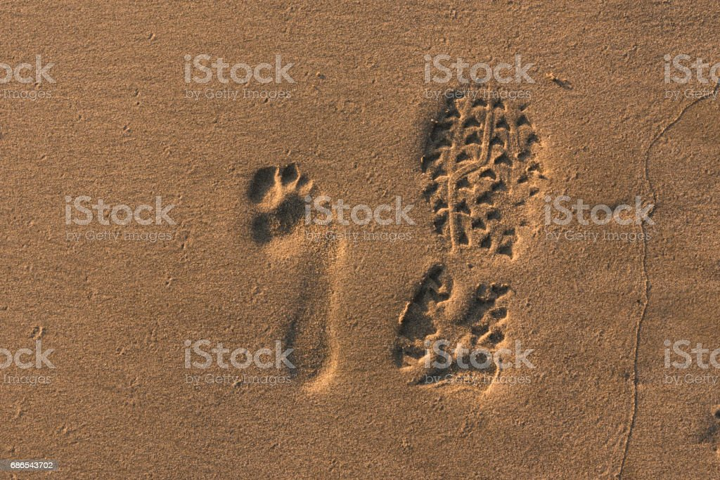 footprints royalty free stockfoto
