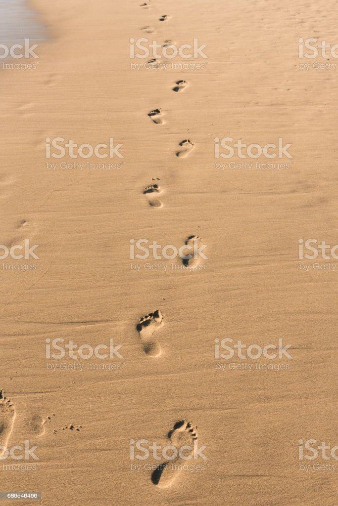 footprints royaltyfri bildbanksbilder