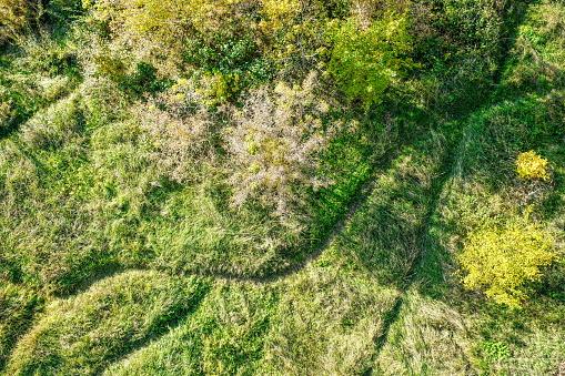 footprints trails crossroads on green field
