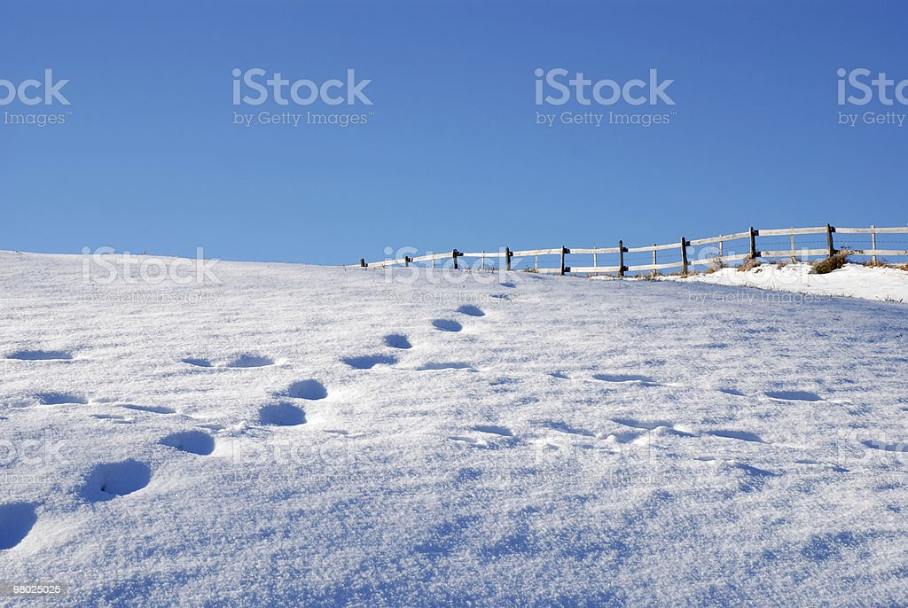 footstep royalty-free stock photo