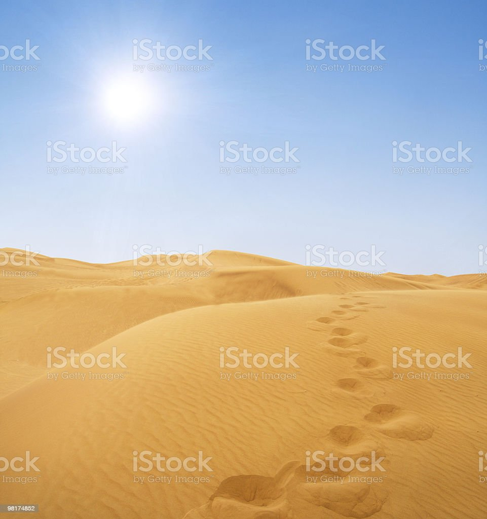footsteps in desert royalty-free stock photo