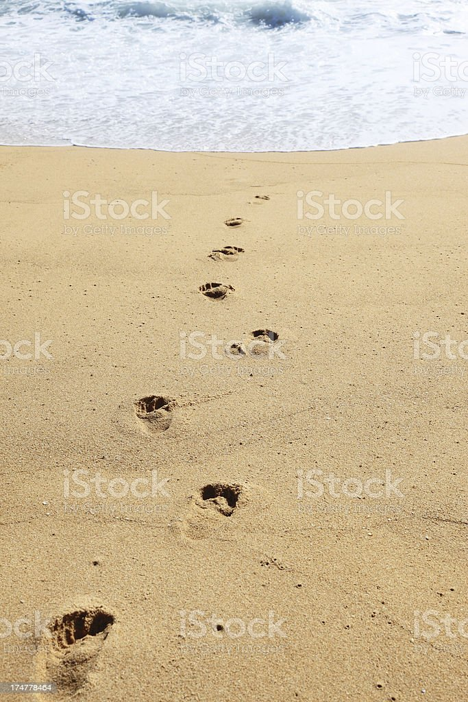 Footsteps into the Ocean royalty-free stock photo