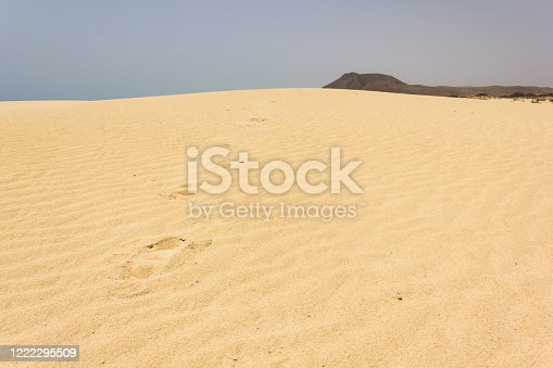Footprints heading to top of sand dunes in Canary Islands, Spain. Arid landscape, travel destination, loneliness, lost, missing concepts