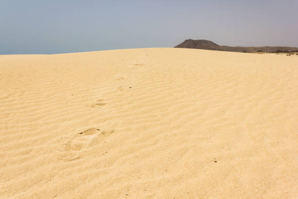 Footsteps on dunes in Corralejo Natural park, Fuerteventura stock photo
