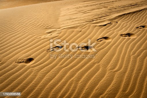 Footsteps on dunes in Kubuqi Desert, Inner Mongolia, China