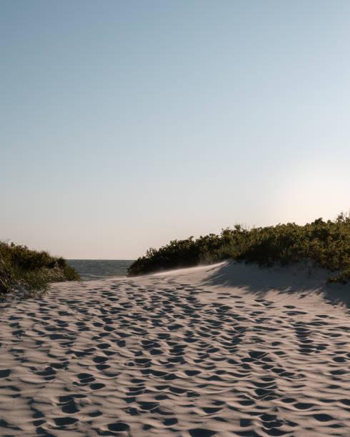 fotsteg på sanddyner som leder mot havet - sand dune sweden bildbanksfoton och bilder