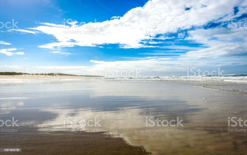 Footsteps tracks on sandy beach in Portugal Atlantic coast. Tracks in...