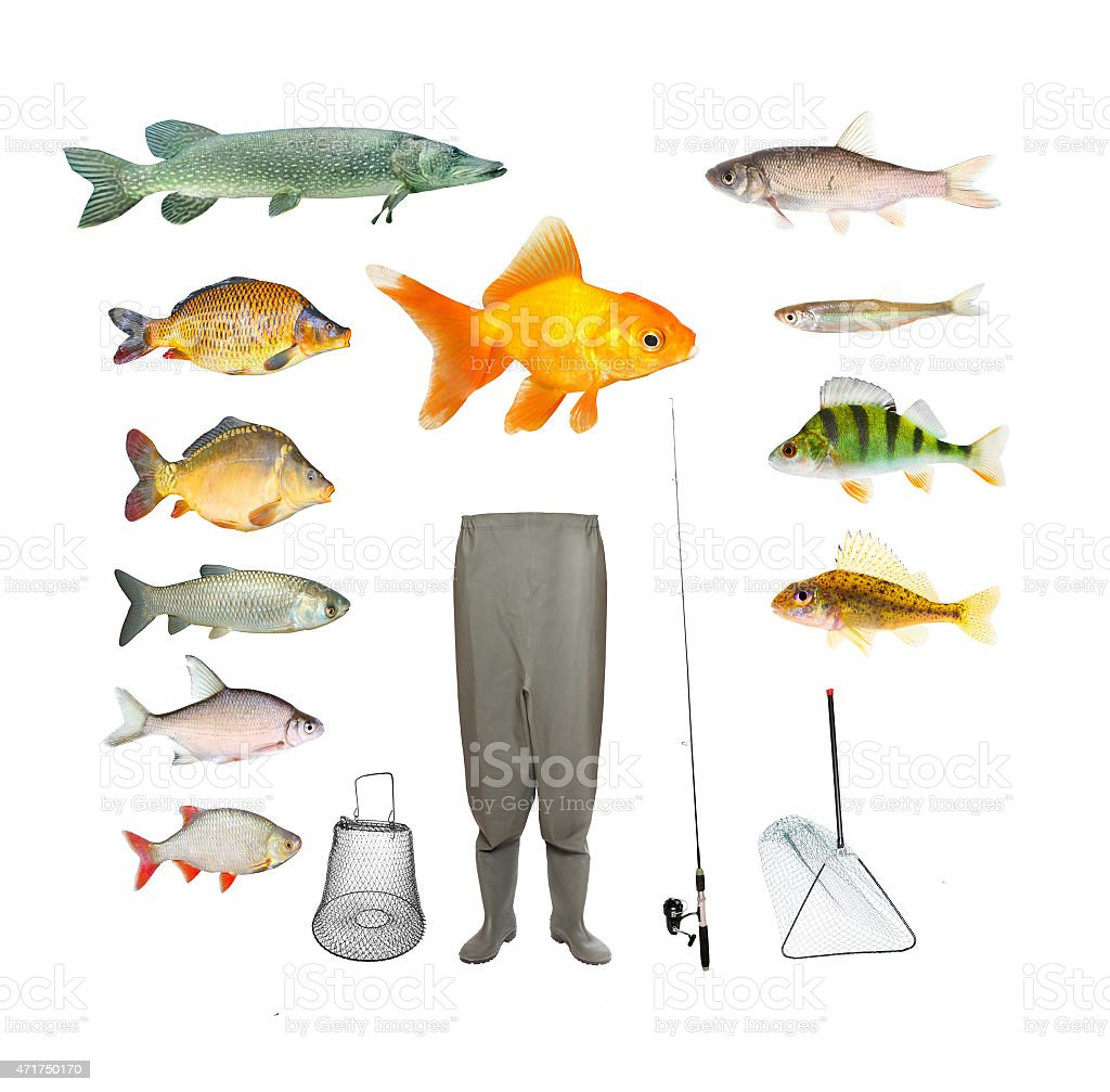 For Fishing. stock photo