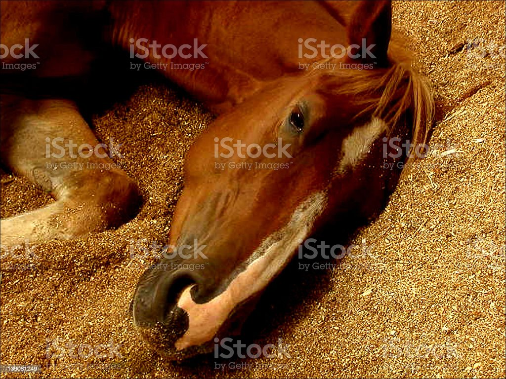 For Only A Moment stock photo