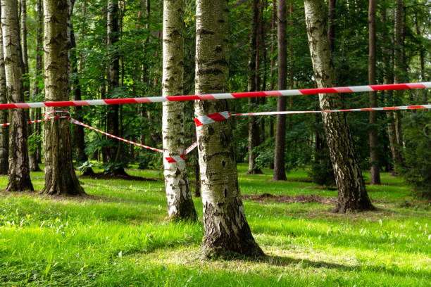 Forbidden fencing with a signal tape of a crime scene in a city park stock photo