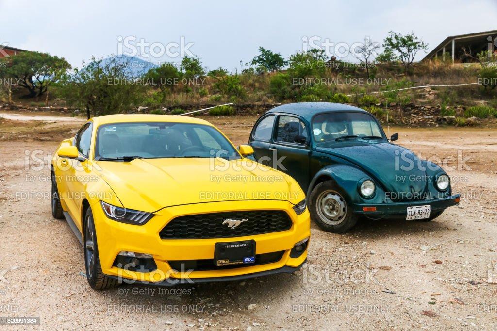 Ford Mustang und VW Käfer – Foto