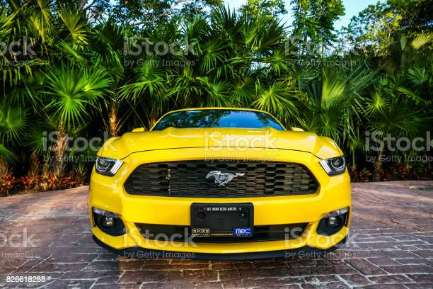 Ford mustang picture id826618288?b=1&k=6&m=826618288&s=612x612&h=1s3xazogu9rrumta8erczwdww9pvoesz3v2ytpwewoa=