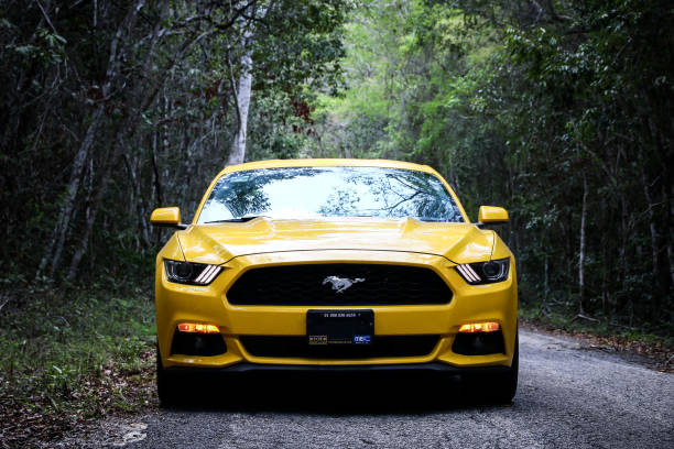 Ford mustang picture id948907946?b=1&k=6&m=948907946&s=612x612&w=0&h=wh6bhd7gbqufc864zuytloclnqkmx1v3qhzjue7ior4=