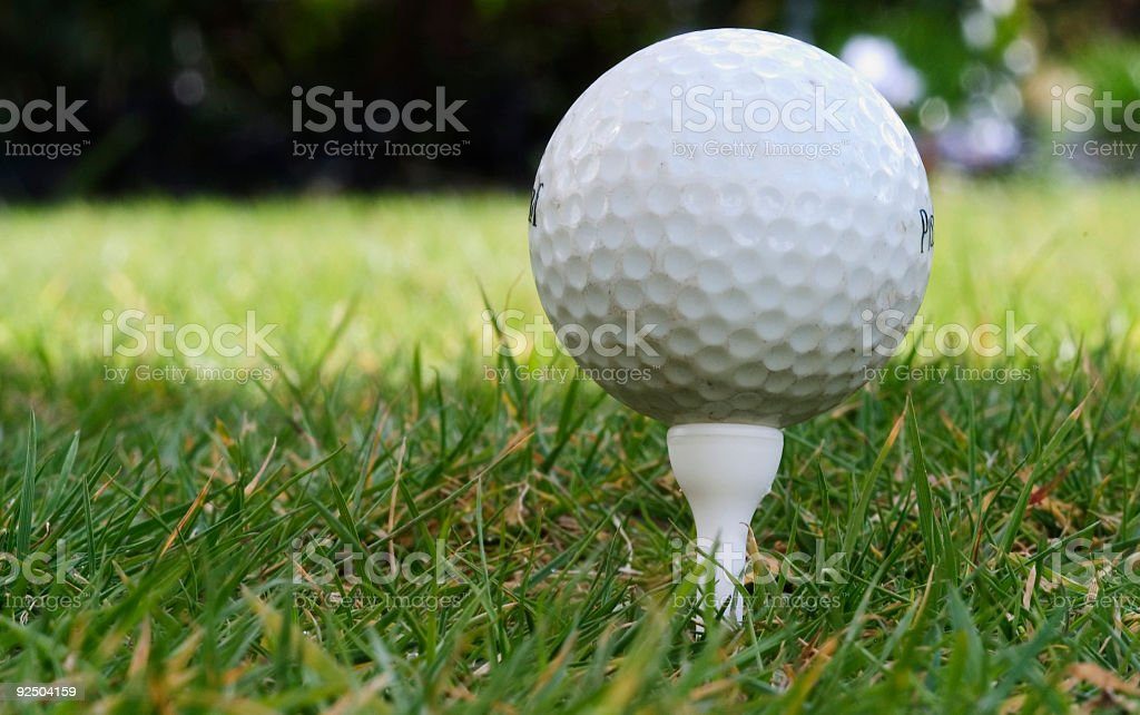 Fore royalty-free stock photo