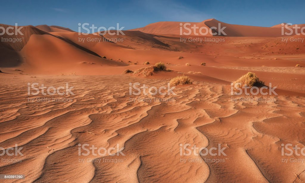 Foreground lines and wavy patterns in sand, with tufts of grass and large red sand dunes in the background. Sossusvlei, Namib Desert, Namibia. stock photo