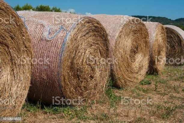 Photo of Foreground of five bales of hay