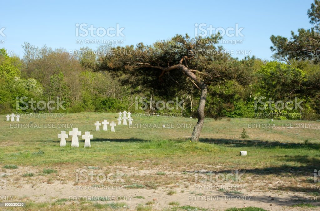 Foreign military memorial burial, here are the graves of the crew and passengers of 'Wilhelm Gustloff' ship stock photo