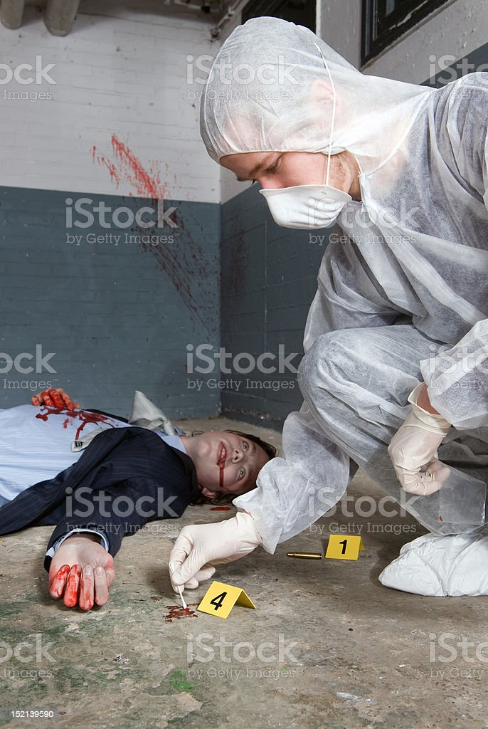 Forensic expert royalty-free stock photo
