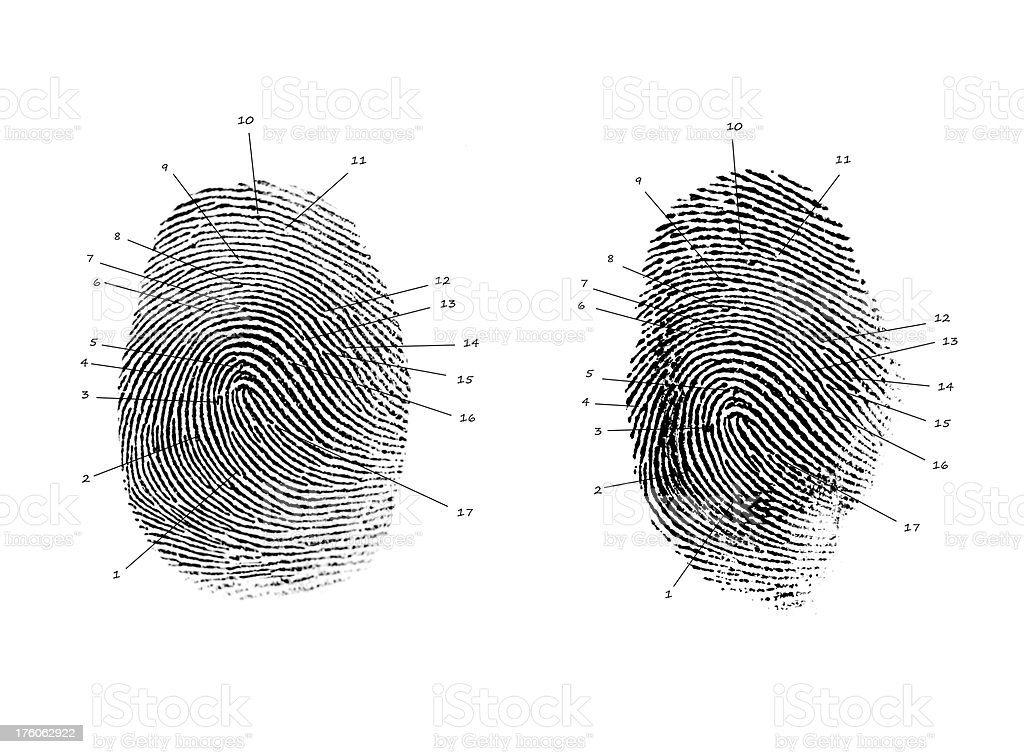 Forensic Fingerprint Comparison Stock Photo Download Image Now Istock