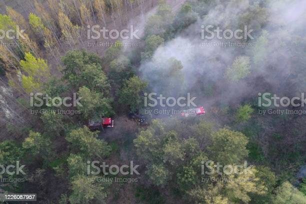 Photo of Forest and field fire. Burning of dry grass, natural disaster. Aerial view. After the fire, the ground is covered with a black and burning layer. Fire truck and firefighters extinguish the fire. Europe hungary