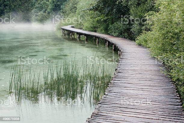Photo of Forest And Lake Path