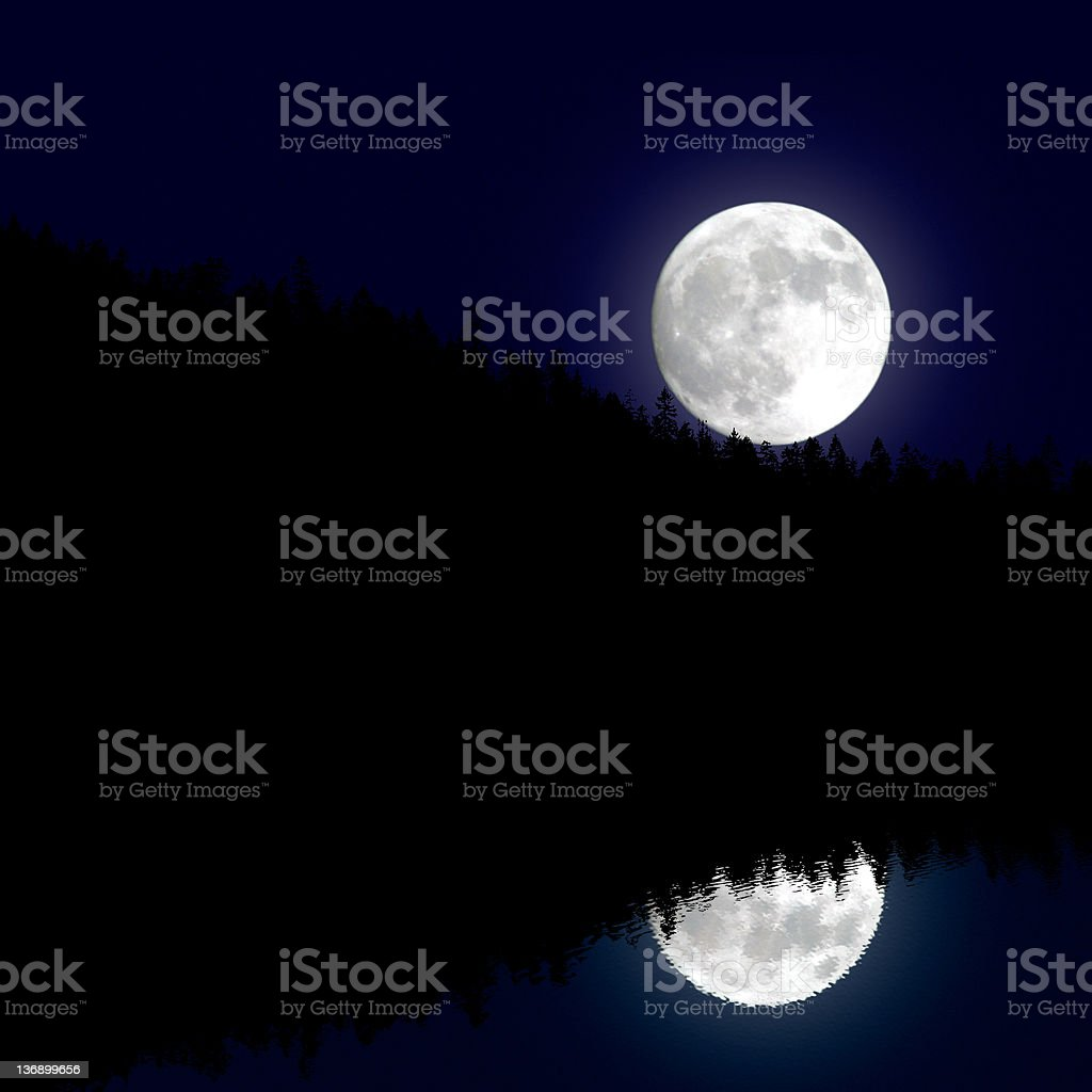 forest and lake with moon royalty-free stock photo