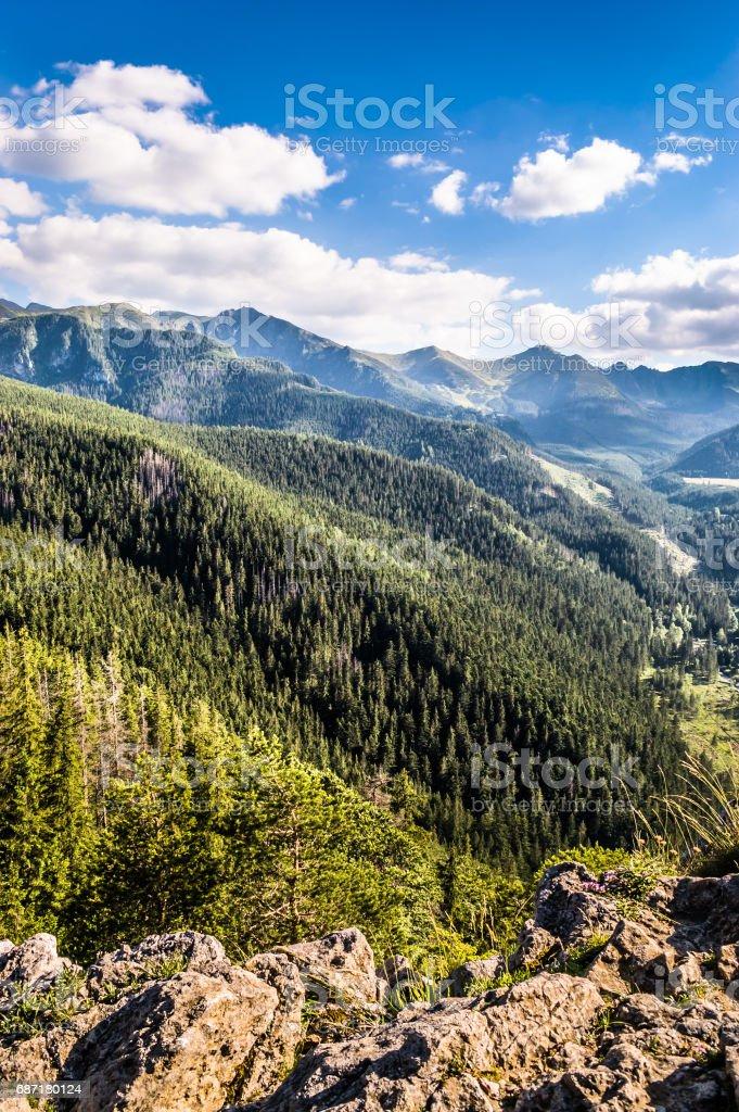 Wald und Berge, Landschaft des Gebirges auf der Himmelshintergrund Lizenzfreies stock-foto