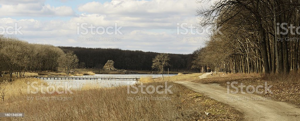 Forest and pond royalty-free stock photo