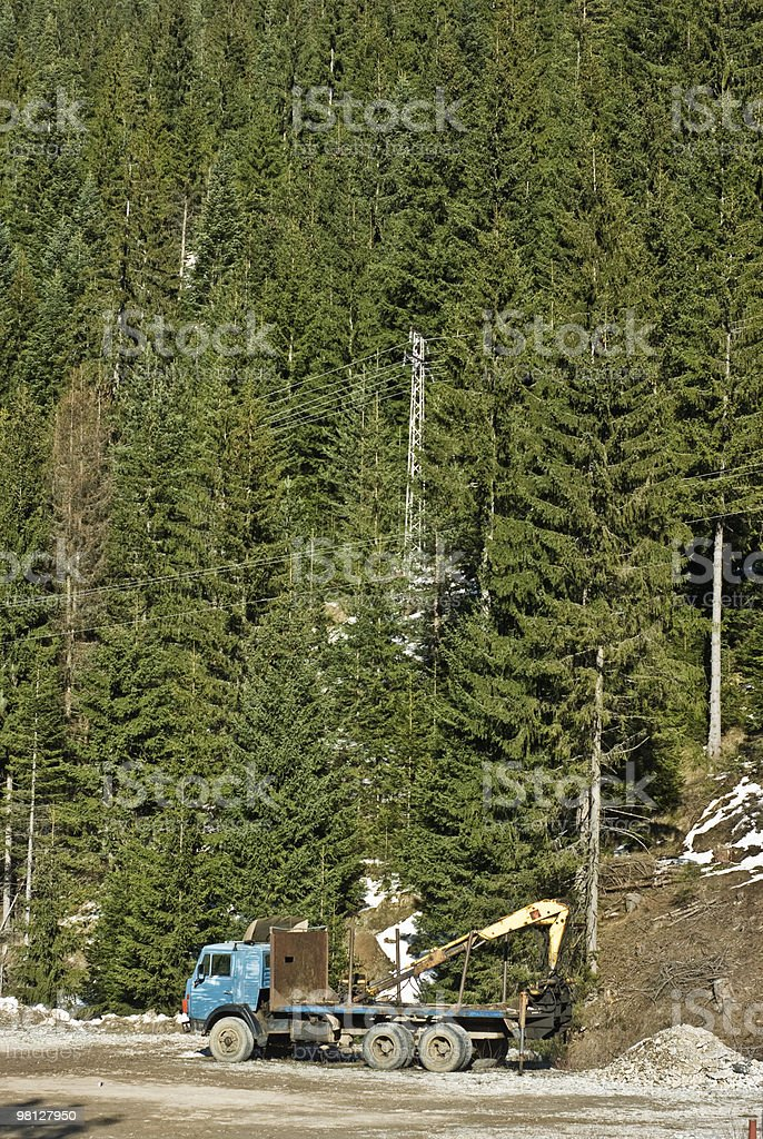 Forest and truck royalty-free stock photo