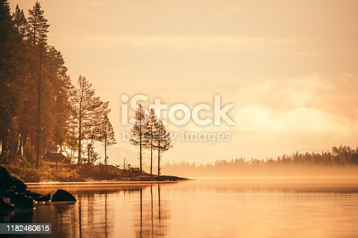 istock Forest at sunset, lake in the woods, fog 1182460615