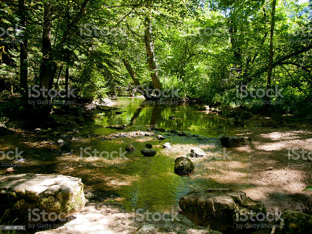 Forest at the waterfalls of Herison, France stock photo