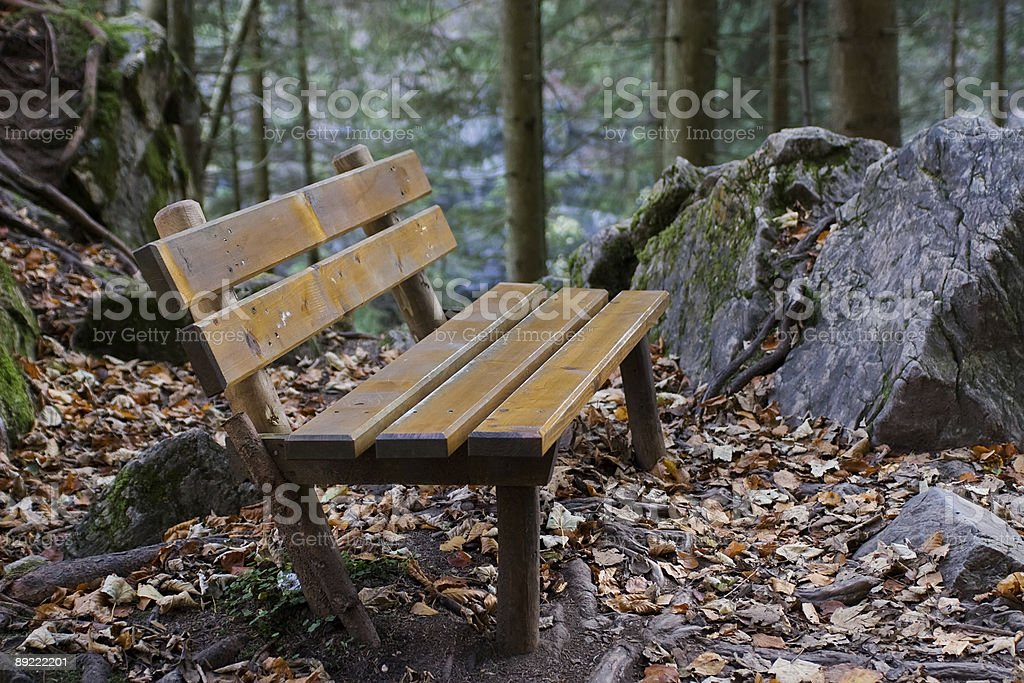 Forest Bench royalty-free stock photo