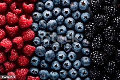 502634476 istock photo Forest berries 502634476