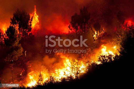Forest big fire very close to houses, Povoa de Lanhoso, Portugal.