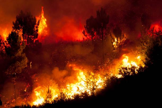 forest big fire very close to houses, povoa de lanhoso, portugal. - incendio boschivo foto e immagini stock